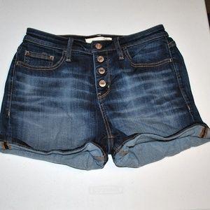 Daytrip Lynx High Rise Jean Shorts